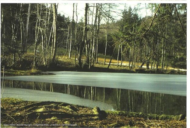 Lohenbachtal
